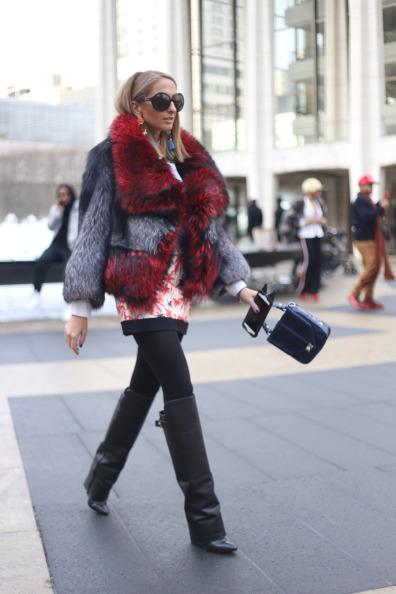 European Red Grey Fur