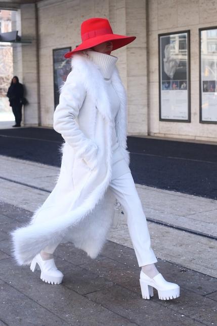 White Fur Red Hat